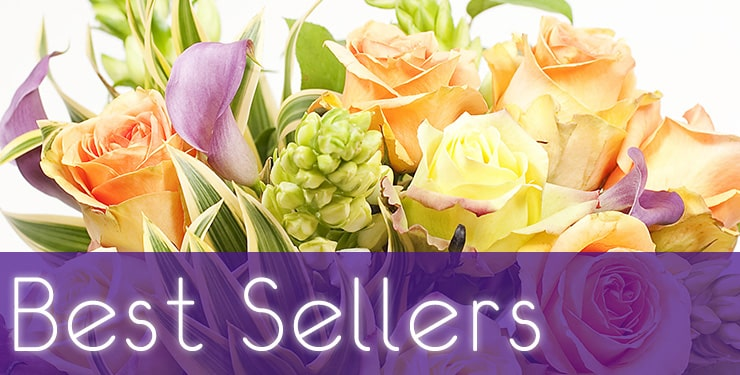The House of Blooms Best Sellers
