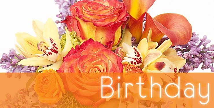The House of Blooms Birthday Collection